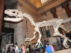PapiBlogger Makes it a 'Day at the Museum' in NYC on Day 41 of Family Road Trip Thumbnail