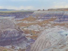 Day 35 of Miami to Alaska Family Road Trip: Arizona's Petrified Forest and a Strange Hotel Thumbnail