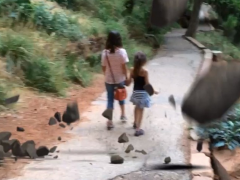 Amazing video footage: Our family averts major natural disaster #safesummer #roadtripprotips 缩略图