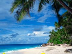 Travel Deals: Summer Travel Planning Mode Thumbnail