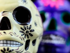 Born on the Day of the Dead Thumbnail